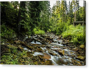 Canvas Print featuring the photograph Mountain Stream by Jaroslaw Grudzinski