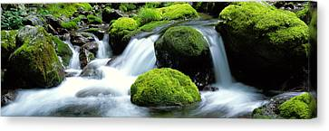 Falling Water Creek Canvas Print - Mountain Stream Kyoto Japan by Panoramic Images