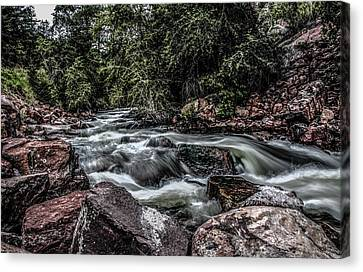 Mountain Stream Canvas Print by Ray Congrove