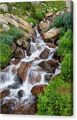 Canvas Print featuring the photograph Mountain Stream by Ronda Kimbrow