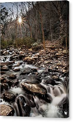 Canvas Print featuring the photograph Icy Mountain Stream by Debbie Green