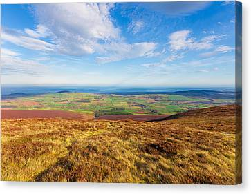 Mountain View From Djouce Towards Greystones Canvas Print