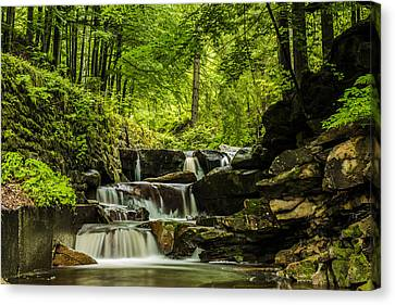 Mountain Waterfall Canvas Print by Jaroslaw Grudzinski