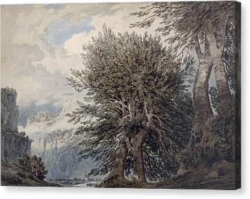 Mountainous Landscape With Beech Trees Canvas Print