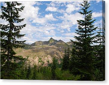 Canvas Print featuring the photograph Mountains And Fir Trees by Robert  Moss