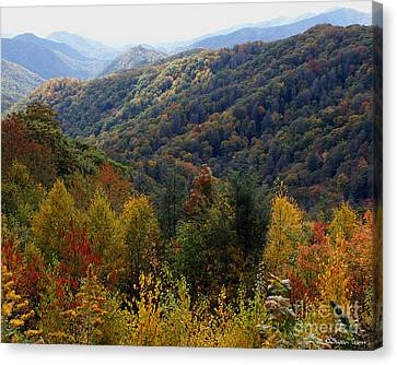 Mountains Leaves Canvas Print