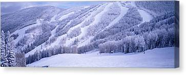 Mountains, Snow, Steamboat Springs Canvas Print by Panoramic Images