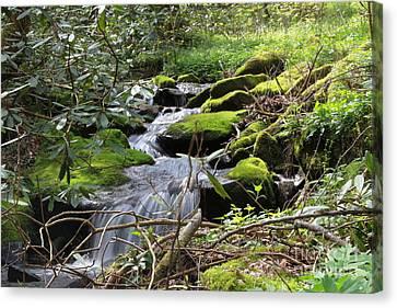 Mountian Cascade Canvas Print