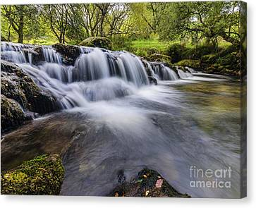 Mountian Water Canvas Print by Darren Wilkes