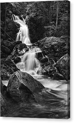 Mouse Creek Falls Canvas Print