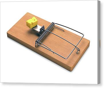 Mousetrap With Cheese Canvas Print by Ktsdesign
