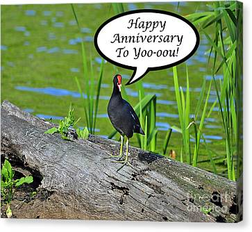 Mouthy Moorhen Anniversary Card Canvas Print by Al Powell Photography USA