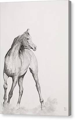 Pencil Drawing Canvas Print - Moving Image by Emma Kennaway