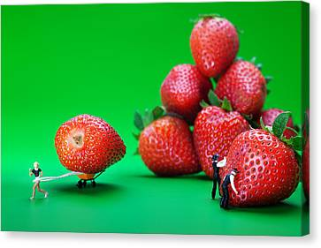 Canvas Print featuring the photograph Moving Strawberries To Depict Friction Food Physics by Paul Ge