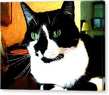 Mprints - Pookie 3 Canvas Print by M  Stuart