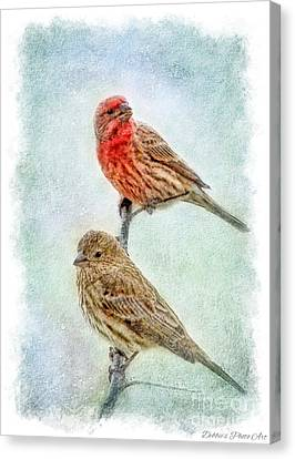 Mr And Mrs House Finch Digital Paint With Frame Canvas Print by Debbie Portwood