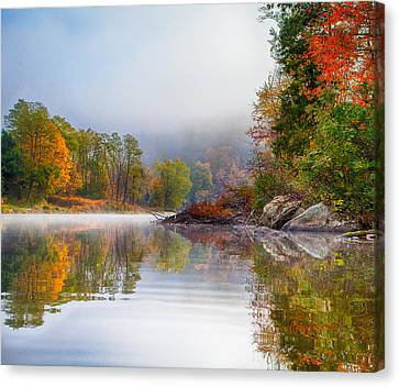 Canvas Print featuring the photograph Mr Beaver   Friend-nemesis by Tom Cameron