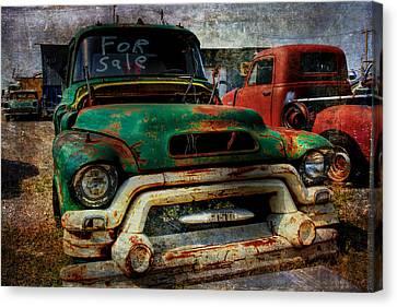 Mr Green 4 Sale Canvas Print by Toni Hopper