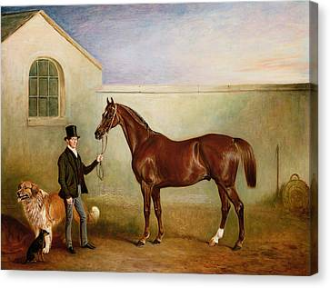 Mr Meakin Holding Sir Robert Peels Chestnut Hunter With His Dogs Hector And Jem Canvas Print by John E Ferneley