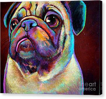 Canvas Print featuring the painting Mr. Pugnacious  by Robert Phelps