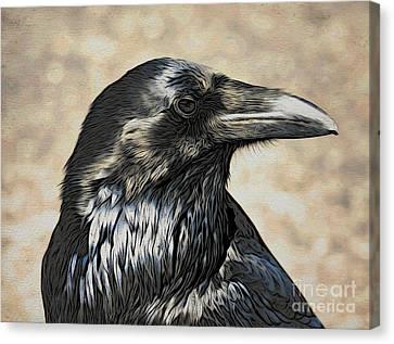 Mr. Raven Canvas Print