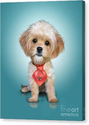 Mr. Toby Waffles The Cavapoo Canvas Print by Catia Cho