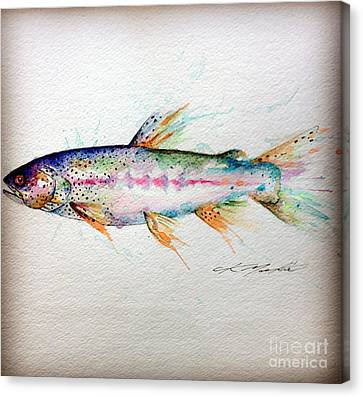 Mr Trout Canvas Print by Chris Mackie