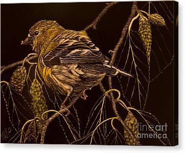 Mrs Goldfinch Canvas Print