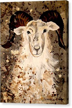 Canvas Print featuring the painting Powell Mountain Goat by Amy Sorrell
