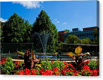 Msu Water Fountain Canvas Print by John McGraw