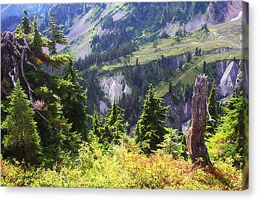 Mt. Baker Washington Canvas Print