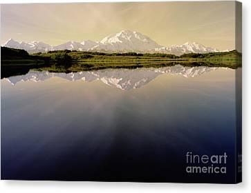 Mt Denali In Morning Light Canvas Print by Yva Momatiuk John Eastcott