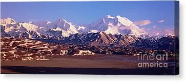 Mt Denali In Spring Snow Canvas Print by Yva Momatiuk John Eastcott