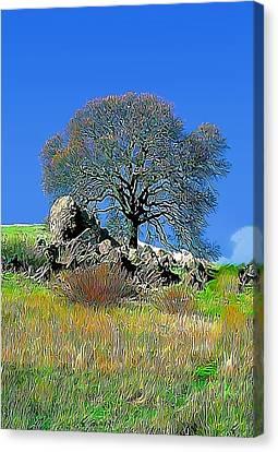 Mt. Diablo Oak Tree Canvas Print by Wernher Krutein