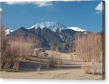 Mt. Herard And The Sand Dunes Colorado Canvas Print