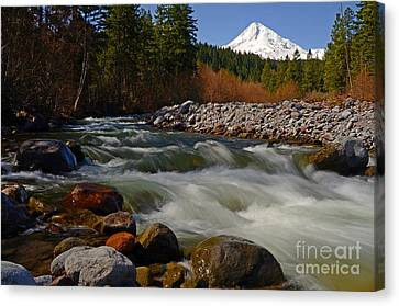 Mt. Hood Landscape Canvas Print by Nick  Boren