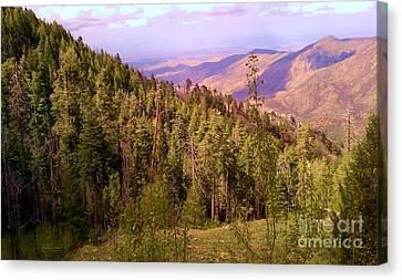 Mt. Lemmon Vista Canvas Print by Robert ONeil