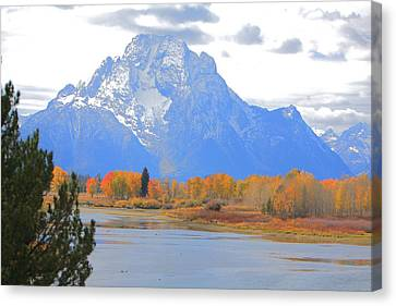 Mt. Moran Majesty Canvas Print