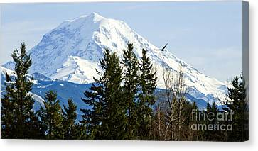 Mt. Rainier And A Bald Eagle  Canvas Print