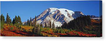 Wa Canvas Print - Mt. Rainier And Fall Color by Panoramic Images