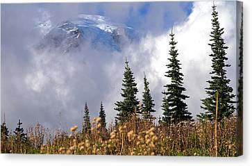 Mt Rainier Cloud Meadow Canvas Print by Scott Nelson