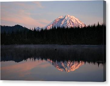 Mt. Rainier From Surprise Lake Canvas Print by Kjirsten Collier