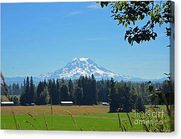 Mt. Rainier From The Western Side Canvas Print