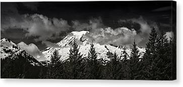 Mt Rainier Panorama B W Canvas Print