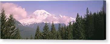 Mt Ranier Mt Ranier National Park Wa Canvas Print