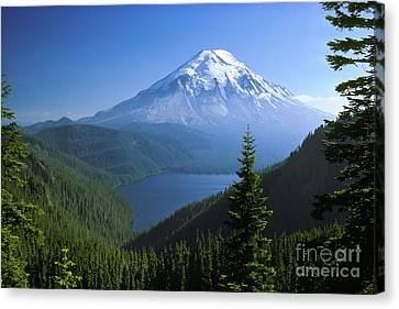 Mt. Saint Helens Canvas Print by Thomas & Pat Leeson
