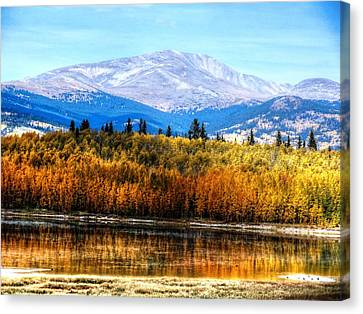 Mt. Silverheels With Aspens Canvas Print by Lanita Williams