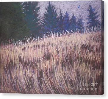 Canvas Print featuring the painting Mt. Tabor Contrasts by Suzanne McKay