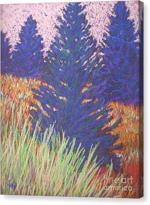 Mt. Tabor Trees Canvas Print by Suzanne McKay