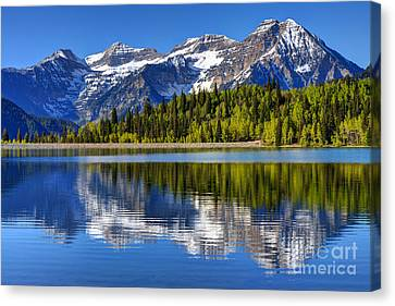 Mt. Timpanogos Reflected In Silver Flat Reservoir - Utah Canvas Print by Gary Whitton